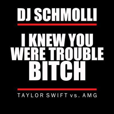 DJ Schmolli - I Knew You Were Trouble Bitch (Taylor Swift vs. AMG)